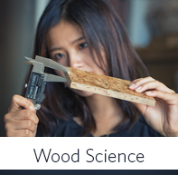 Wood Products Processing