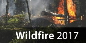 Wildfire 2017