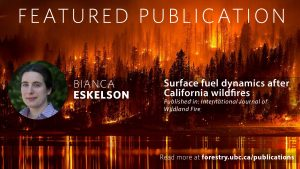Surface Fuel Dynamics after California Wildfires