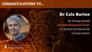 Cole Burton named Canada Research Chair in Terrestrial Mammal Conservation