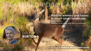 Wildlife Winners and Losers in an Oil Sands Landscape